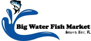 Big Water logo